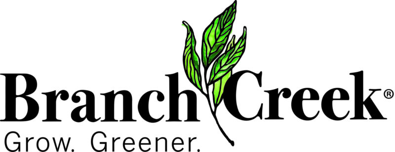 branch creek logo