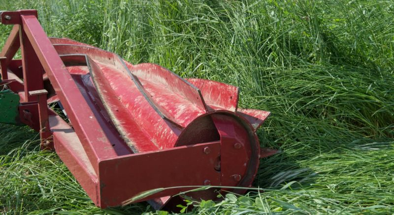 roller crimper rolling down a cover crop