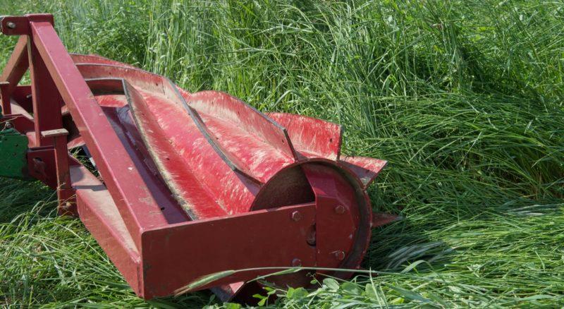 rizador de rodillo rodando por un cultivo de cobertura