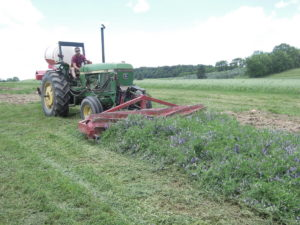 Farmer using the roller crimper