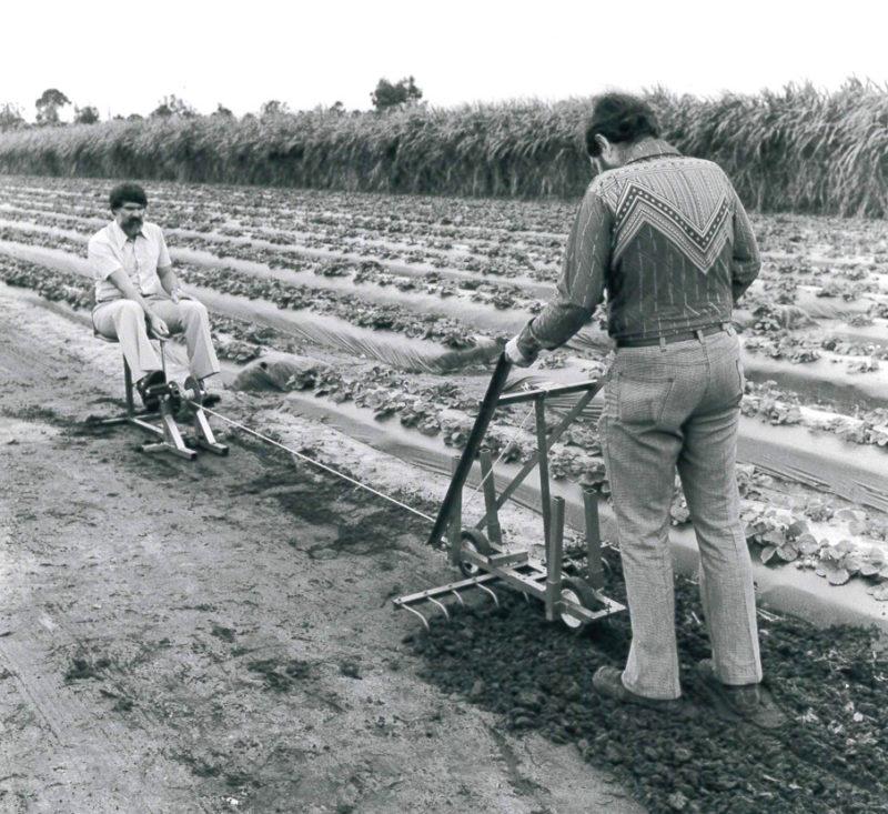 historic rodale farming
