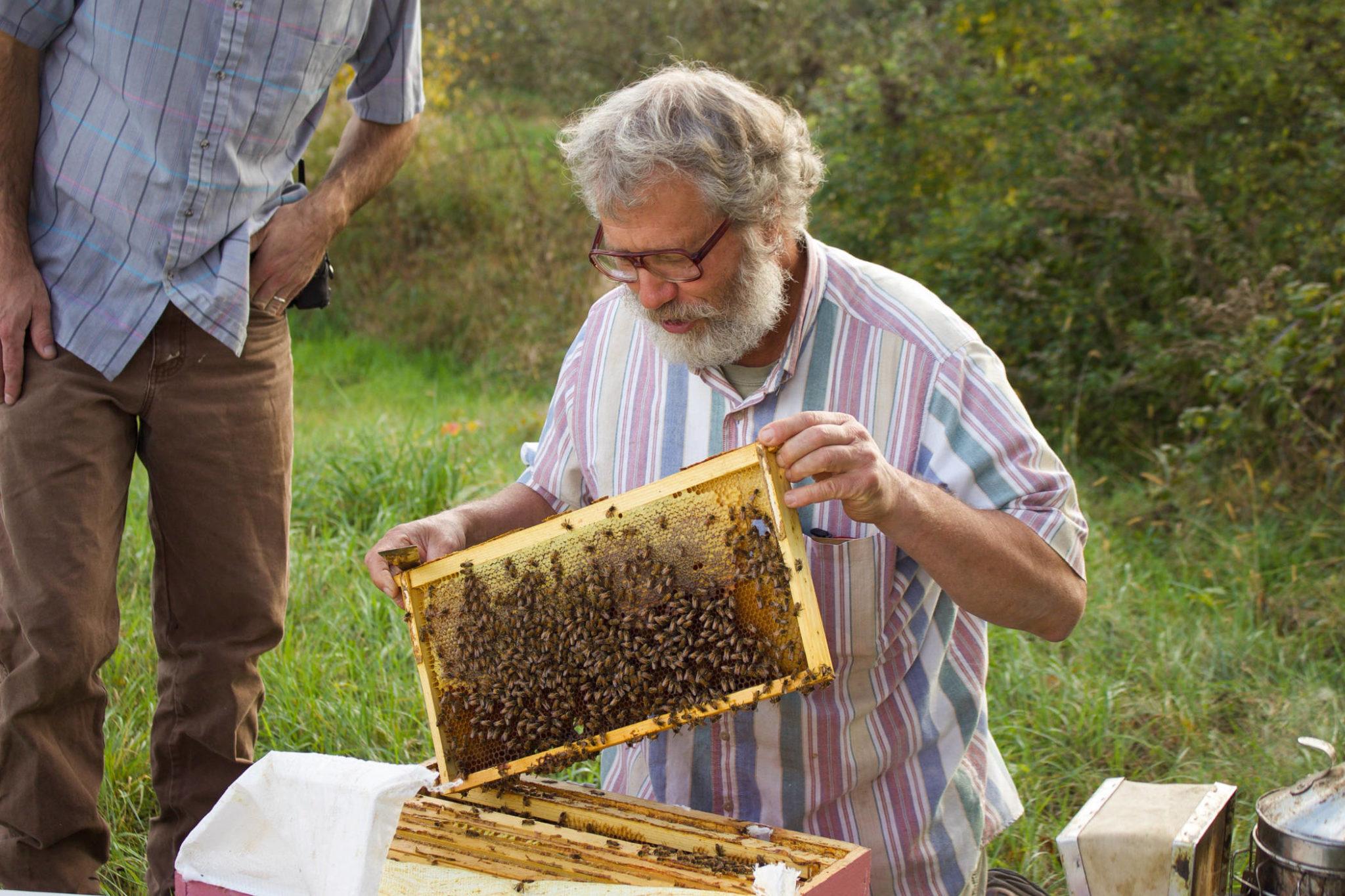 Treatment Free Beekeeping With Kirk Webster Rodale Institute