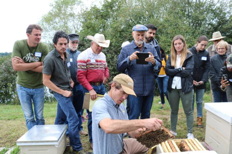 rodale beekeeping tour