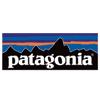 patagonia icon