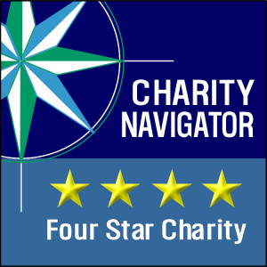 charity nav icon