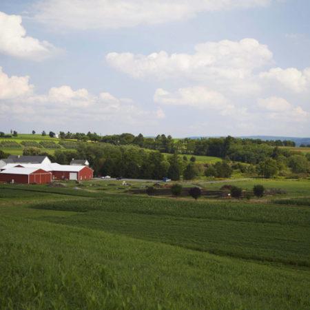 rolling farmland at rodale institute