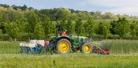 mowing down cover crop roller crimper