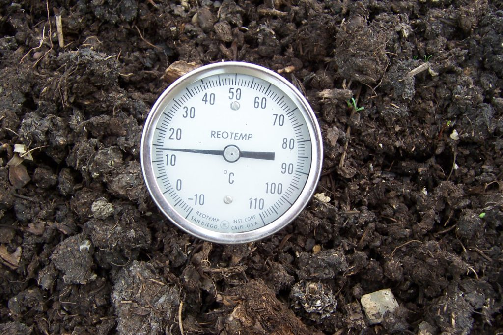 mature compost pile with a thermometer