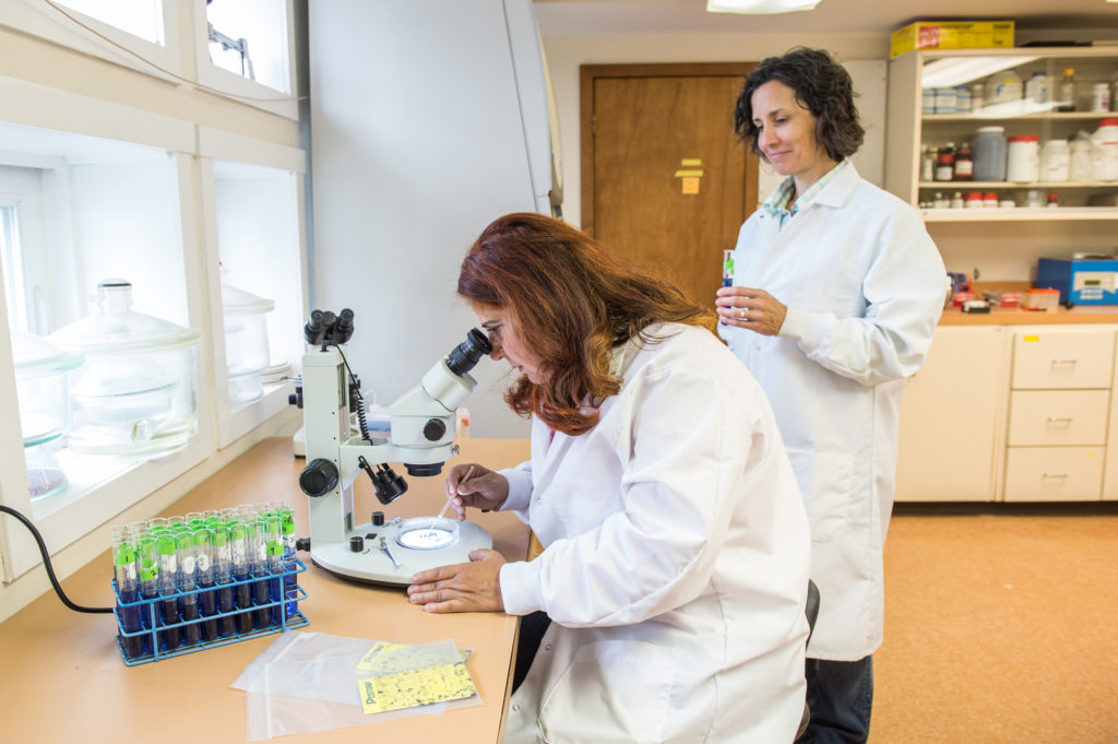 rodale scientists in the lab