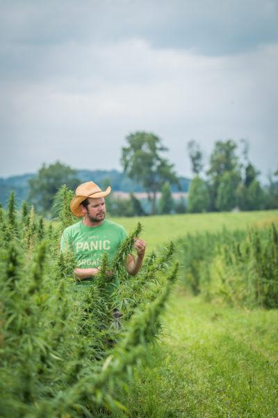 rodale hemp farmer