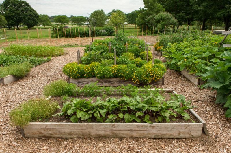 rodale garden beds