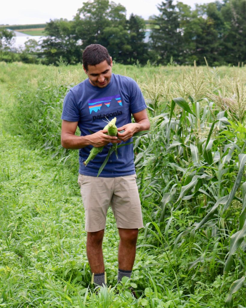 Diversified Vegetable Farming Internship - Rodale Institute